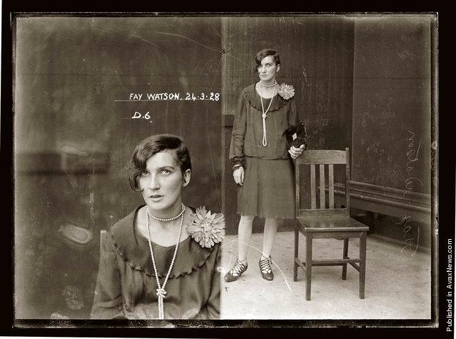 Mug shot of Fay Watson, 24 March 1928, Central Police Station, Sydney