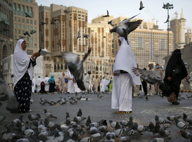 Muslim pilgrims take pictures while standing amongst pigeons outside the Grand mosque in the holy city of Mecca ahead of the annual haj pilgrimage September 21, 2015. (Photo by Ahmad Masood/Reuters)
