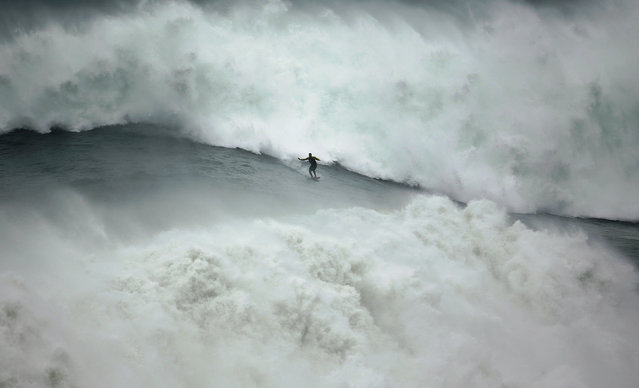 Big-wave surfer Garrett McNamara of the U.S. drops in on a large wave at Praia do Norte, in Nazare, November 1, 2013. (Photo by Rafael Marchante/Reuters)