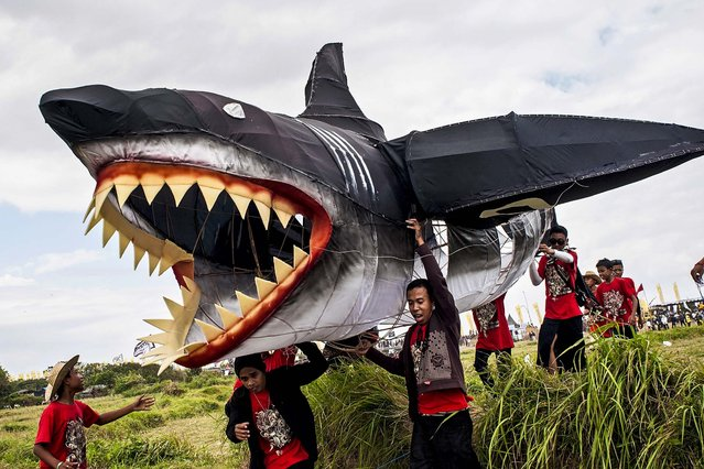 Participants carry a shark shaped kite during the Bali Kite Festiva in Denpasar, Indonesia, on July 26, 2013. The event is a seasonal religious festival, which is intended to send a message to Hindu Gods to create abundant harvests and crops. Aproximately 1121 traditional kites are flown during the three day annual Festival. (Photo by Putu Sayoga/Getty Images)