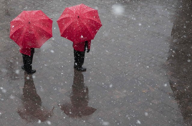 Employees of the Capitol Hill Visitor Center stand under umbrellas as snow falls on Capitol Hill in Washington January 21, 2015. (Photo by Joshua Roberts/Reuters)