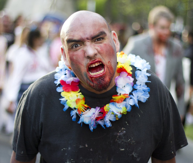 """""""This zombie did not have fun in Hawaii"""". (Photo and caption by Nathan Rupert)"""