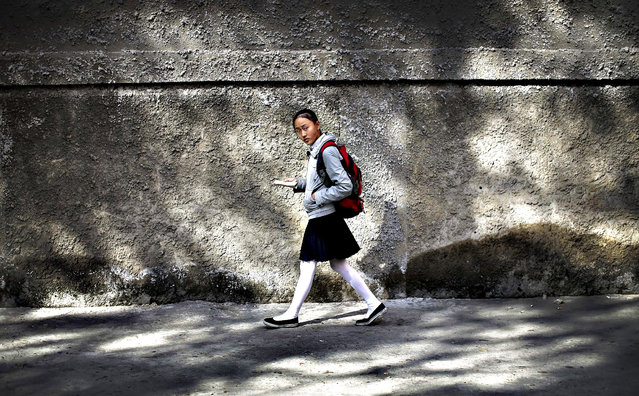 A North Korean school girl looks up from reading her book while walking through a residential area Wednesday, October 14, 2015 in Pyongyang, North Korea. (Photo by Wong Maye-E/AP Photo)