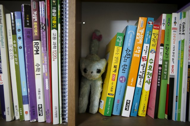 A soft toy is seen between reference books in a room belonging to Kim Ju-hee, a high school student who died in the Sewol ferry disaster, in Ansan April 8, 2015. Her dream was to be a doctor. (Photo by Kim Hong-Ji/Reuters)
