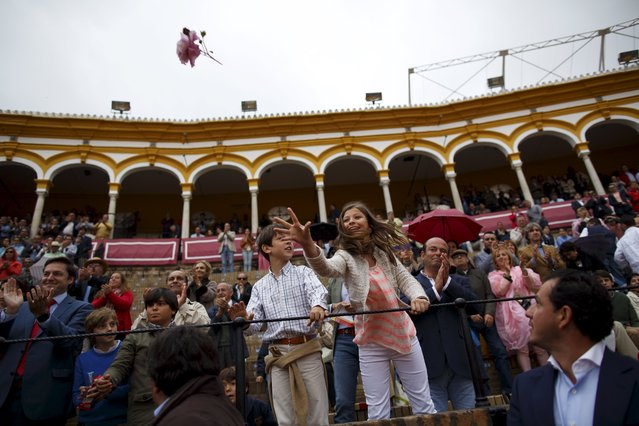 A girl throws a flower to Spanish rejoneador (mounted bullfighter) Fermin Bohorquez during a bullfight at The Maestranza bullring in the Andalusian capital of Seville, southern Spain April 26, 2015. (Photo by Marcelo del Pozo/Reuters)