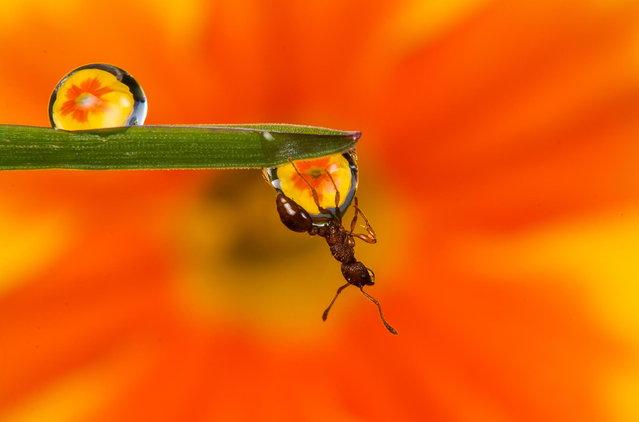 Untitled. (Photo by Kutub Uddin)