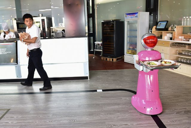 Robot Xiaotao delivers food at a restaurant in Jinhua, Zhejiang province, China, May 18, 2015. (Photo by Reuters/Stringer)