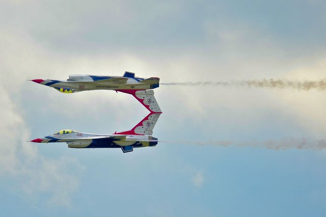 U.S. Air Force Thunderbird F-16 Fighting Falcons execute a precision acrobat technique. (Photo by Rex Features)