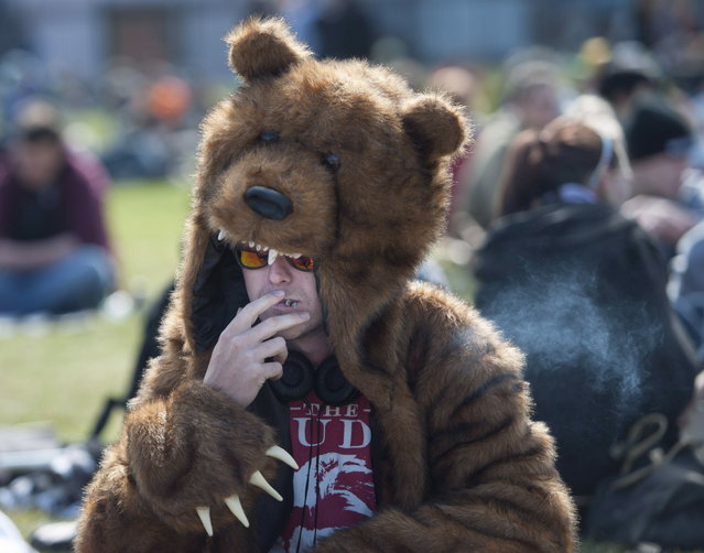 A man in a bear costume smokes a joint at the Fill the Hill marijuana rally on Parliament Hill in Ottawa on Sunday, April 20, 2014. (Photo by Justin Tang/The Canadian Press)