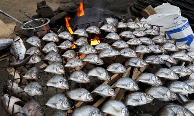 Fish are placed on a wire mesh to air at an open stall within Mathare valley slums in Kenya's capital Nairobi, July 9, 2015. (Photo by Thomas Mukoya/Reuters)