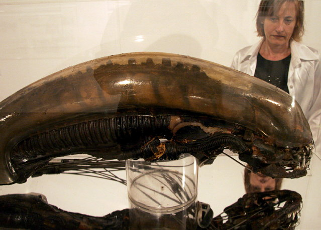 """A woman observes the original model of the monster's head from the movie """"Alien, The Eighth Passenger"""" by Swiss artist H.R. Giger, during an exhibition of his work at the Valencia Technical College University in Valencia, Spain, 18 October 2007. (Photo by Biel Alino/EPA)"""