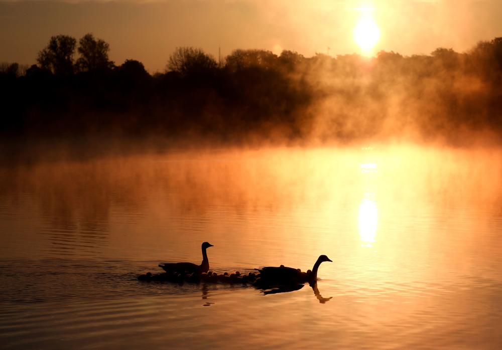 Some Photos: Foggy Morning