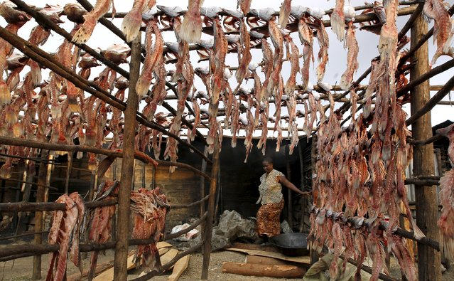 """A fish trader is seen near fish skeletons hung out to dry on wooden poles at her stall at the Obunga """"mgongo-wazi"""" fish frying market in Kenya's western town of Kisumu in this March 7, 2013 file photo. (Photo by Thomas Mukoya/Reuters)"""