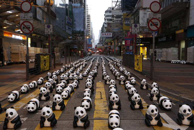 """Part of the 1,600 paper pandas, created by French artist Paulo Grangeon, are displayed at a street in Mongkok, a shopping district in Hong Kong during the month-long """"1600 Pandas World Tour"""", Friday, June 13, 2014. (Photo by Kin Cheung/AP Photo)"""