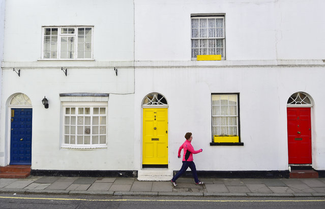 A woman takes an early morning walk past painted blue, yellow and red front doors – the colours of the current three main political parties in the UK, Conservative, Liberal Democrat and Labour respectively – in Isleworth, west London, Britain, April 30, 2015. Britain goes to the polls in a national election on May 7. (Photo by Toby Melville/Reuters)