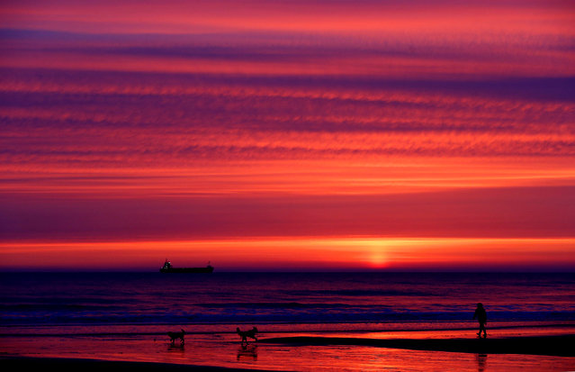 A dog walker on Longsands beach before sunrise in Tynemouth, UK on April 1, 2016. (Photo by Owen Humphreys/PA Wire)