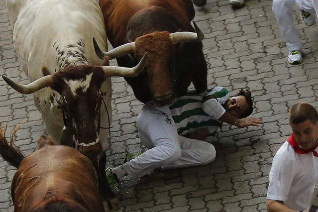 A reveler falls while others run with a Jandilla's ranch fighting bull during the running of the bulls of the San Fermin festival in Pamplona, Spain, Tuesday, July 7, 2015. (Photo by aniel Ochoa de Olza/AP Photo)