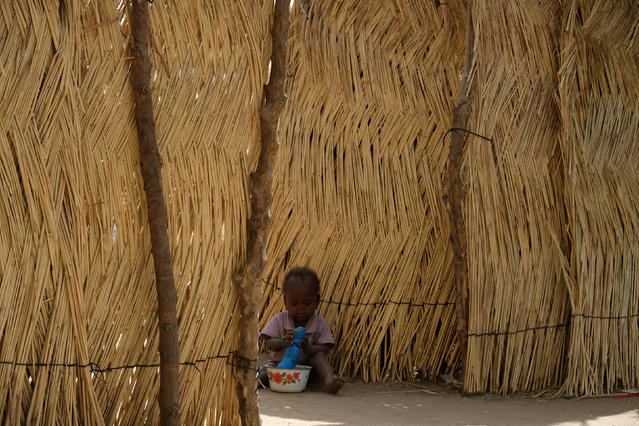 A young child plays by the thatch shacks used by many refugees to build their homes in the Muna Garage area in the city of Maiduguri, Nigeria February 16, 2017. (Photo by Paul Carsten/Reuters)