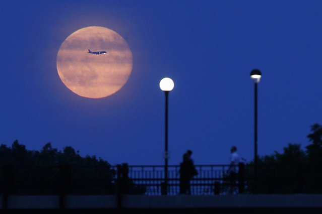 Aircraft passes in front of a Supermoon rising over the Rideau Canal in Ottawa July 12, 2014. Occurring when a full moon or new moon coincides with the closest approach the moon makes to the Earth, the Supermoon results in a larger-than-usual appearance of the lunar disk. (Photo by Blair Gable/Reuters)