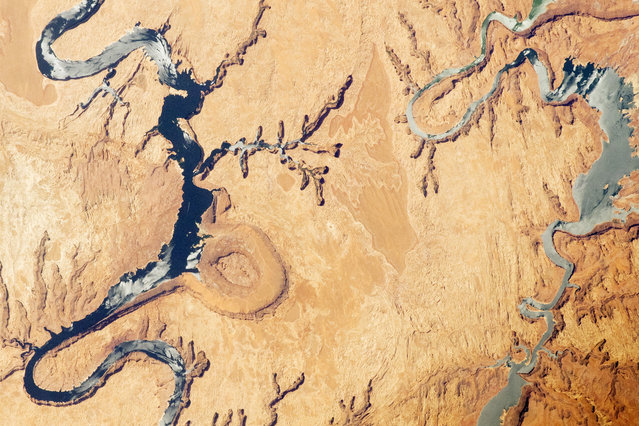 An April 30 photo taken from the International Space Station highlights part of Lake Powell, which extends across southeastern Utah and northeastern Arizona