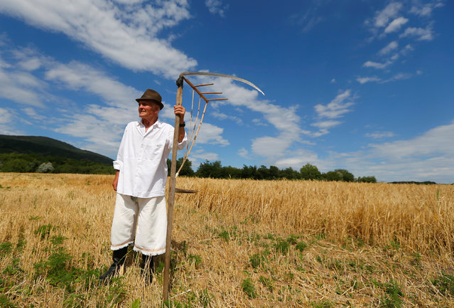 A man holds his scythe during the Harvest Festival in Hosszuheteny, Hungary, July 9, 2016. (Photo by Laszlo Balogh/Reuters)