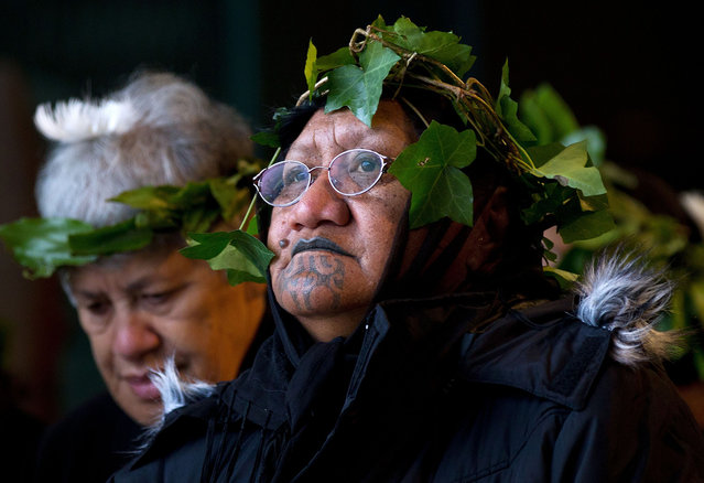 Members of The Tainui Waka Alliance tribe welcome the return of 20 mummified tattooed Maori heads (Toi Moko) that were taken to Europe in the 1700s and 1800s, during a ceremony at Te Papa Museum in Wellington, New Zealand, on January 27, 2012. The tattooed heads were handed over by French officials at the Quai Branly Museum in Paris after a four-year political struggle. The Maori heads were once warriors that tattooed their faces with elaborate geometric designs to show their rank and were an object of fascination for European explorers who collected and traded them from the 18th century onwards. (Photo by Marty Melville/AFP)