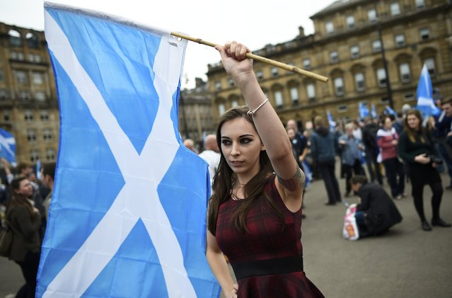 """A woman waves a Scottish Saltire at a """"Yes"""" campaign rally in Glasgow, Scotland September 17, 2014. The referendum on Scottish independence will take place on September 18, when Scotland will vote whether or not to end the 307-year-old union with the rest of the United Kingdom. (Photo by Dylan Martinez/Reuters)"""