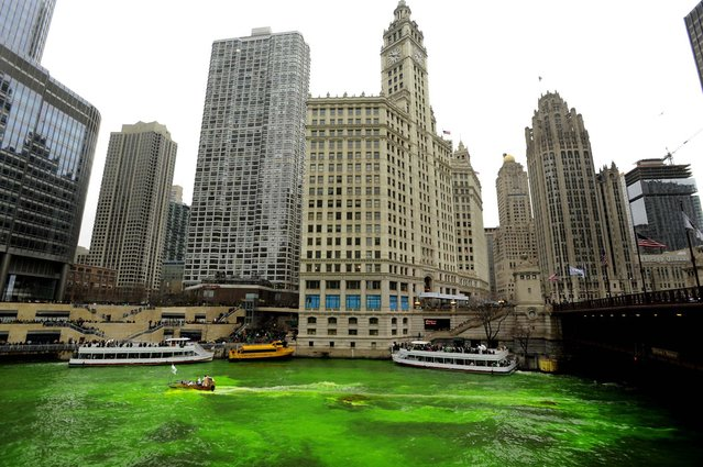 The Chicago River is dyed green before the start of the St. Patrick's Day parade in Chicago, on March 16, 2013.  With the holiday itself falling on a Sunday, many celebrations were scheduled instead for Saturday because of religious observances. (Photo by Paul Beaty/Associated Press)