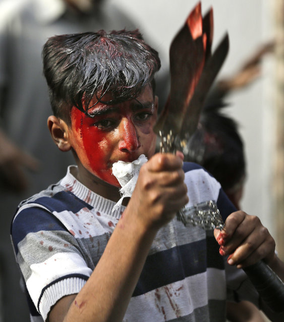 A Kashmiri Shiite Muslim boy flagellates himself during a Muharram procession in Srinagar, Indian controlled Kashmir, Sunday, October 9, 2016. Muharram is a month of mourning in remembrance of the martyrdom of Imam Hussein, the grandson of Prophet Mohammed. (Photo by Mukhtar Khan/AP Photo)