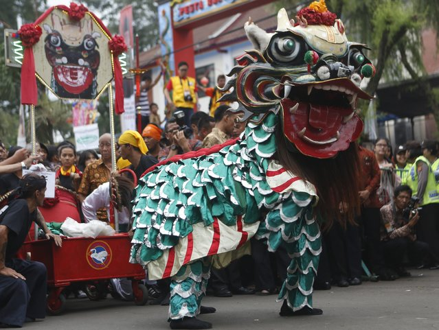 Indonesian lion dancers perform during the people's party and Chinese Cap Go Meh festival in Bogor, Indonesia, 05 March 2015. Chinese-Indonesians across the country celebrate Cap Go Meh on the 15th day in the first month of the Chinese lunar new year.  EPA/ADI WEDA