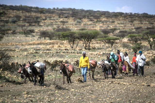 People walk from a rural area down a path across stony farmland towards a nearby town where a food distribution operated by the Relief Society of Tigray was taking place, near the town of Agula, in the Tigray region of northern Ethiopia Saturday, May 8, 2021. (Photo by Ben Curtis/AP Photo)