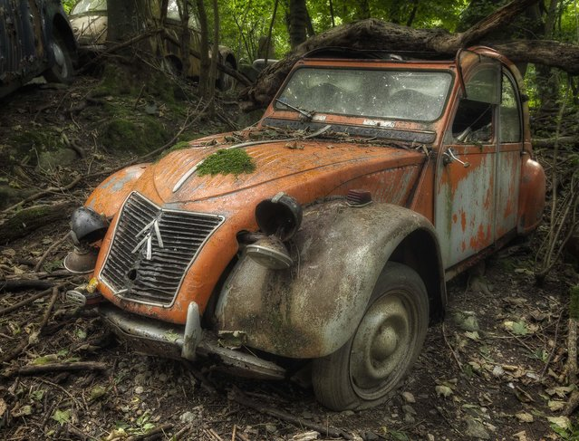 A bulky tree appears to have crashed down on the roof of this clapped-out Citroen. (Photo by Kenneth Provost/Mediadrumworld.com)