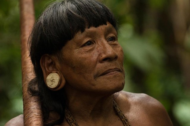 Some members of the South American tribe stretch their ear lobes. (Photo by Pete Oxford/Mediadrumworld.com)