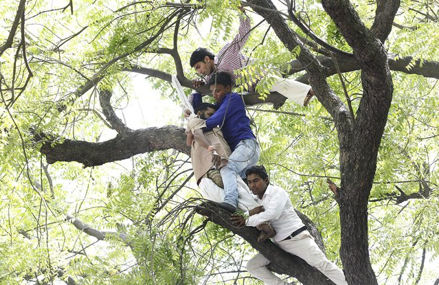 Farmers and acitivists of India's Aam Admi Party (AAP) bring down farmer Ganjendra Singh from a tree after he committed suicide during a protest rally against the land bill at Jantar Mantar in New Delhi, India, 22 April 2015. (Photo by Harish Tyagi/EPA)