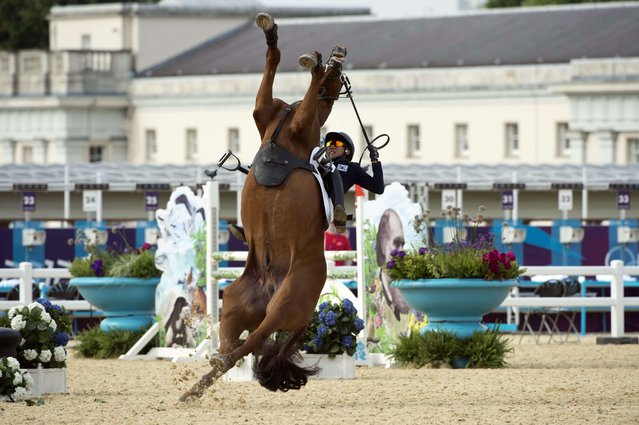 South Korea's Hwang Woojin loses control of his horse Shearwater Oscar during the Show Jumping event of the Modern Pentathlon during the 2012 London Olympics at the Equestrian venue in Greenwich Park, London, on August 11, 2012. (Photo by John MacDougall/AFP Photo)