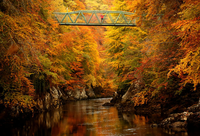 A woman stands on the footbridge over the river Garry near Pitlochry, Scotland, Britain on October 10, 2018. (Photo by Russell Cheyne/Reuters)