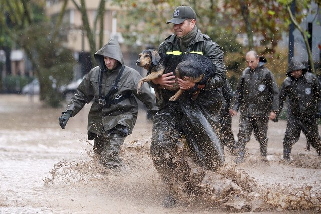 "A Chilean policeman rescues a dog during a downpour in Santiago de Chile, Chile, 17 April 2016. Due to rains in the metropolitan region, authorities decreed a ""red alert"" as more than four million people have no drinking water and hundreds of streets were flooded. At least one person died, five are missing, and thousand were affected by swollen rivers and several landslides caused by the storm affecting central Chile since 16 April. (Photo by Mario Ruiz/EPA)"