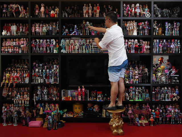 """Barbie collector Jian Yang stands on a stool as he arranges part of his collection at his home in Singapore September 2, 2013. The white exterior and spartan grey staircase of Jian Yang's tidy rowhouse give no hint of the shock that lies within – a pink living room floor and his collection of more than 6,000 """"Barbie"""" dolls. The Singaporean favors minimalist decor but the Barbies and 3,000 dolls of other kinds dominate three sides of the main room and spill over to fill nine mirrored cabinets in his dressing room and the shelves of his study. (Photo by Edgar Su/Reuters)"""