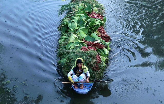 A Kashmiri woman rows a boat ferrying vegetables in Dal Lake during restrictions after scrapping of the special constitutional status for Kashmir by the Indian government, in Srinagar, September 5, 2019. (Photo by Danish Ismail/Reuters)