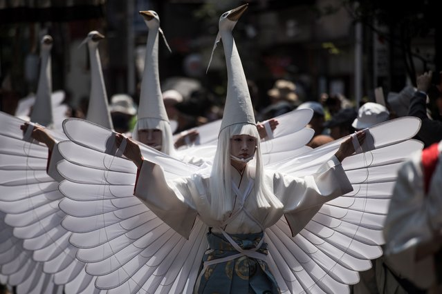 In this picture taken on May 19, 2017, heron-hooded dancers parade during the Sanja Matsuri festival in Tokyo. (Photo by Fred Dufour/AFP Photo)