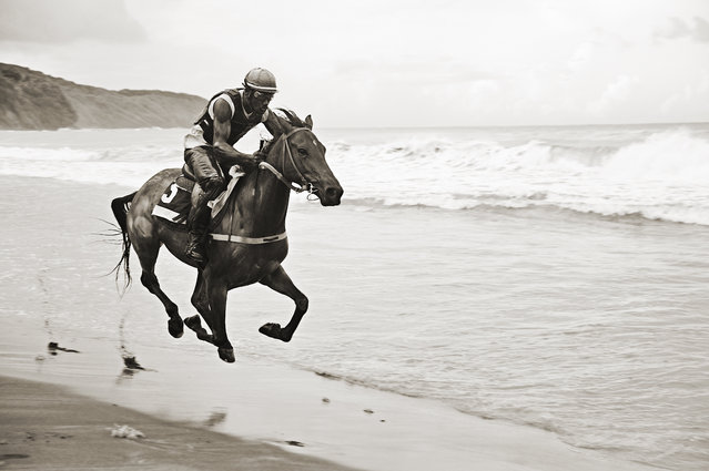 """Forces of Nature"". A wild Beach in Martinique, French West indies, The force of the atlantic waves breaking on the shore of the north of the island, the strenght of both the man and the horse riding along... This race of thoroughbred horses happens once a year for the town festival. Photo location: Sainte Marie, Martinique, French West Indies. (Photo and caption by Nicolas Derné/National Geographic Photo Contest)"