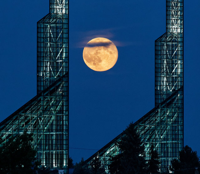 A supermoon rises over the Oregon Convention Center in Portland, July 12, 2014. (Photo by Mike Zacchino/The Oregonian)