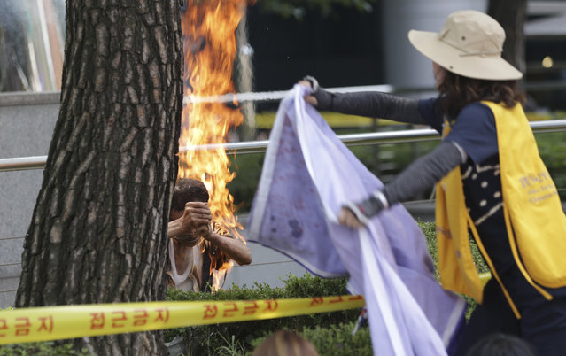 A South Korean man, left, sets himself on fire as a woman tries to extinguish him during an anti-Japan rally demanding full compensation and an apology for wartime s*x slaves from the Japanese government in front of the Japanese Embassy in Seoul, South Korea, Wednesday, August 12, 2015. Rescue worker Woo Kyung-suk  said that the 80-year-old man sustained third-degree burns on his upper body and arms and was breathing when he was carried into an emergency vehicle. (Photo by Lee Jin-man/AP Photo)