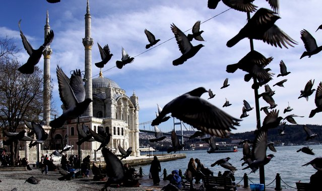 """""""Birds Take Flight in Istanbul"""". Using a Canon 5D camera, Baris Ornarli, 36, of Washington, took this photo of Istanbul's Ortaköy Mosque in February on the Bosphorus Bridge, which connects Europe to Asia. (Photo by Baris Ornarli)"""