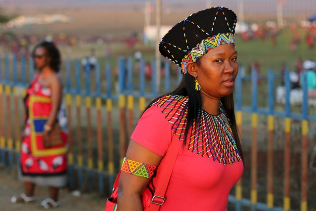 Visitors arrive for the last day of the Reed Dance at Ludzidzini Royal Palace in Swaziland, August 31, 2015. (Photo by Siphiwe Sibeko/Reuters)
