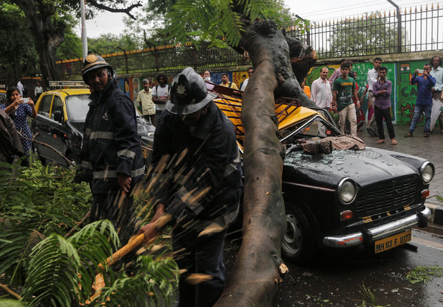 A fireman clears a fallen tree which fell on a parked taxi due to monsoon rains in Mumbai, India, August 2, 2016. (Photo by Shailesh Andrade/Reuters)