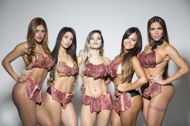 """""""Women are not just a piece of meat"""" – that's the message of the final shoot for this year's Miss Bumbum competition. The photos, with the beauty pageant candidates wearing Lady Gaga-like meat outfits, are being used for the official invites for the grand finale on November 6th in Sao Paulo. It follows controversies from previous invites, such as having the women pose in the roles of Jesus and the apostles in a recreation of The Last Supper. The latest shoot took 8 hours between make-up, production and putting together the costumes – with 50kg of meat. The finale of the 7th Miss Bumbum will have a jury voting for Brazil's most beautiful butt, with one winner to be chosen from 15 finalists. (Photo by Splash News and Pictures)"""