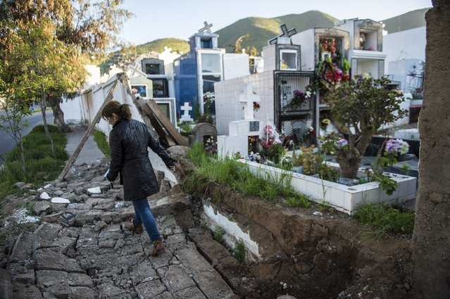 A woman walks over rubble next to a cemetery after an earthquake in Illapel, some 200 km north of Santiago on September 17, 2015. A powerful 8.3-magnitude earthquake struck off Chile on September 17, killing eight people, forcing the evacuation of a million and sparking warnings that tsunami waves could reach Japan. (Photo by Martin Bernetti/AFP Photo)