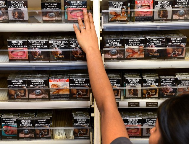 An employee in a bookshop adjusts packaged cigarettes which have to be sold in identical olive-brown packets bearing the same typeface and largely covered with graphic health warnings, with the same style of writing so the only identifier of a brand will be the name on the packet, in Sydney on December 1, 2012.  A new world-first law forcing tobacco companies to sell cigarettes in identical packets came into effect Saturday in Australia in an effort to strip any glamour from smoking and prevent young people from taking up the habit