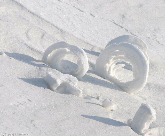 Snow Roller – Yukon Territory. (Photo by Alan Sorum)